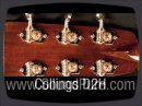 Www.soundpure.com The Collings D2H, a crisp, balanced dreadnought guitar, rings with clarity and evenness. The bass response is great and provides enough support without being to overpowering. Single lines sound punchy and thick - a perfect cannon for bluegrass. This versatile D2H is great if you are looking for a high-end rosewood dread. Call us here at Sound Pure for availability and details.