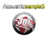 Virtual Instrument : AcousticsampleS Christmas Sale - pcmusic