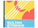 Instrument Virtuel : Time+Space et Sonokinetic Sultan Strings - pcmusic