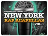 Virtual Instrument : New York Rap Acapellas Vol 1 - pcmusic