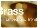 Music Hardware : Clavia Nord New Brass Sounds Available - pcmusic