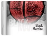 Virtual Instrument : Analogfactory Releases Black Mamba - pcmusic