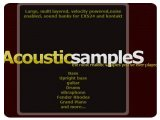 Virtual Instrument : 2011 XMAS Sale at Acousticsamples - pcmusic