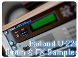 Virtual Instrument : Martin78.com Launches Roland U-220 / U-20 Drum & fx Samples - pcmusic