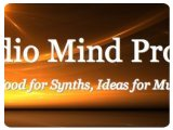 Virtual Instrument : Audio Mind Project Releases Moonshine - pcmusic