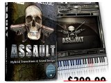 Virtual Instrument : Sample Logic Announces ASSAULT - pcmusic