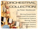 Instrument Virtuel : Best Service Lance Complete Orchestral Collection - pcmusic