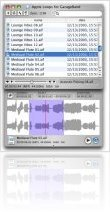 Music Software : RapidPreview v1.2 - macmusic