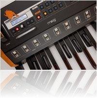 Matériel Musique : Du nouveau sur le Moog Taurus - macmusic