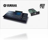 Audio Hardware : Waves ships WSG-Y16 Mini-YGDAI Soundgrid I/O Card for Yamaha Mixing Consoles - macmusic