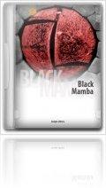 Instrument Virtuel : Analogfactory Présente Black Mamba - macmusic