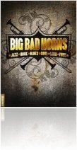 Instrument Virtuel : Big Fish Audio Big Bad Horns - macmusic
