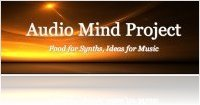 Virtual Instrument : Audio Mind Project Releases Moonshine - macmusic