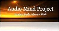 Instrument Virtuel : Audio Mind Project Lance Moonshine - macmusic